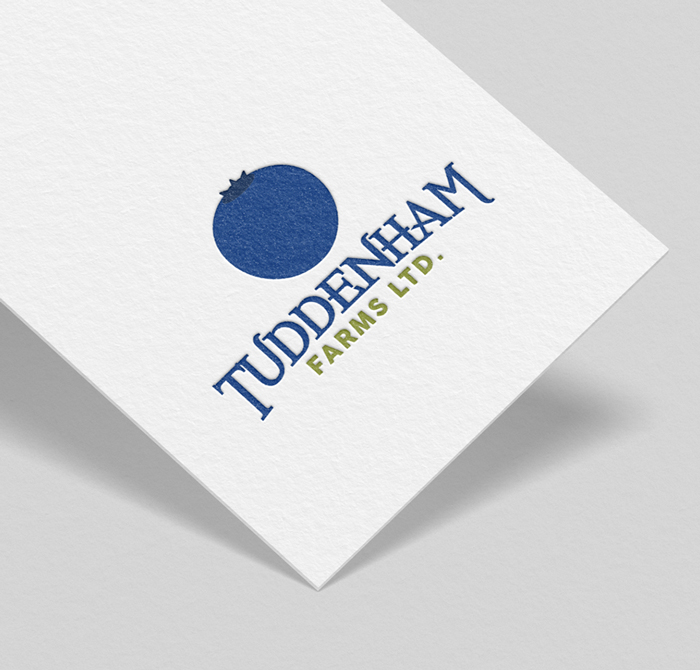 Sample_Tuddenham